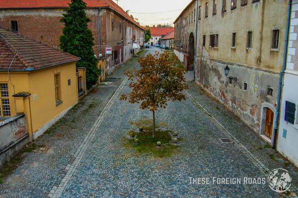 Osijek Tree