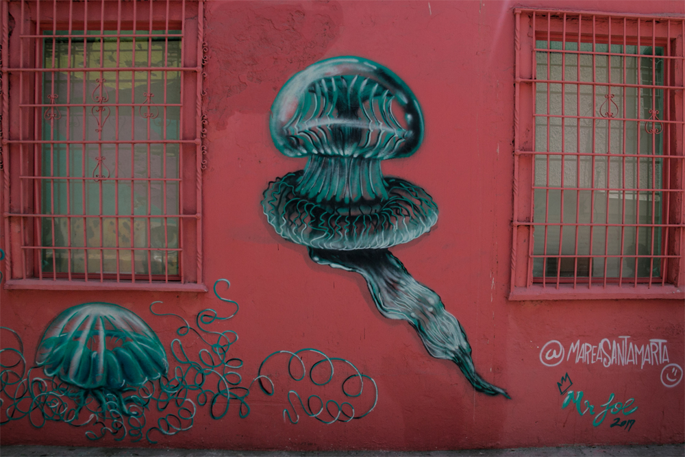 Pink wall with graffiti of a blue jellyfish
