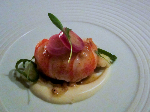 Lobster, sauces, and garnishes on a plate